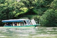 Sarapiqui river boat to see wild animals