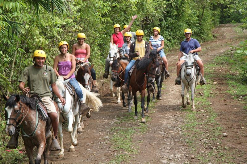 Horseback riding through the refreshing clouds forest with stunted vegetation & Costa Rica tours | San Lorenzo Canopy and Horseback Riding ...