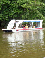 Boating the canals of Tortuguero spotting and listening for various wildlife