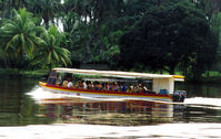 Enjoy a canal boat ride looking for and hearing monkeys, crocodiles, and colorful birds