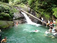 Check out the rainforest swimming hole