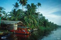 Several homes and hotels are located on the canals close to the Village of Tortuguero